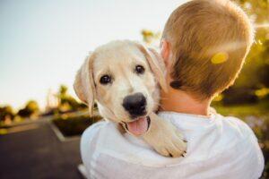 pas-štene-kuče-dete-zagrljaj
