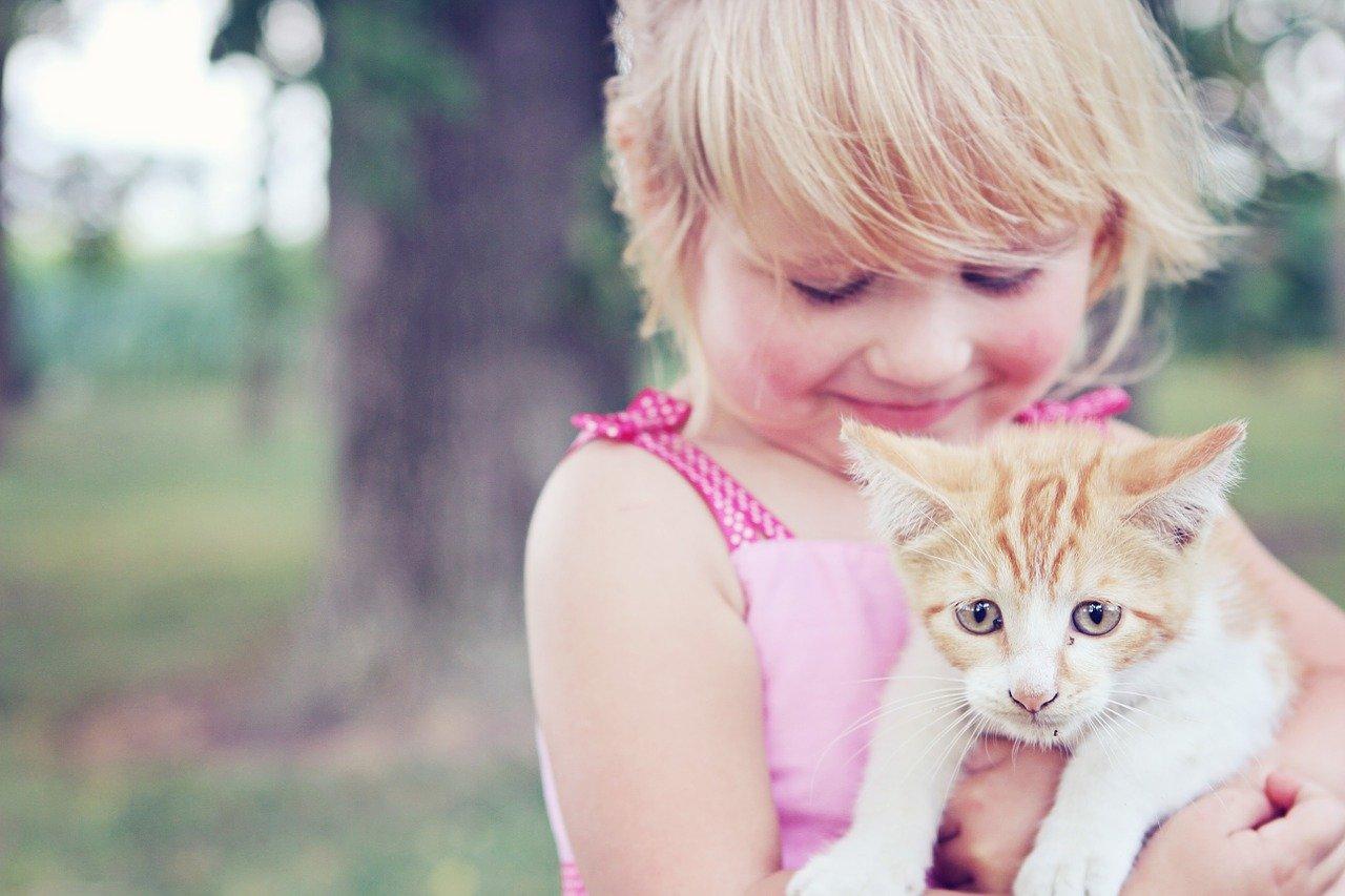 dete-mačka