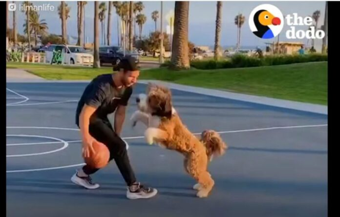 pasa-basket-aktivnost
