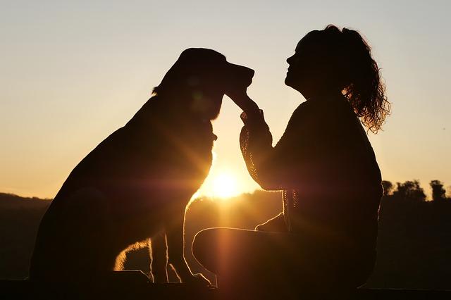 žena-pas-zakazak-sunca-dete