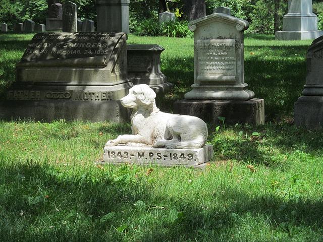 groblje-pas-kućni-ljubimci